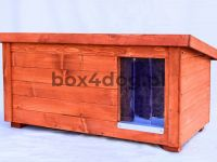 box4dog-buda-dla-psa-2w1-M-01_4x3.jpg
